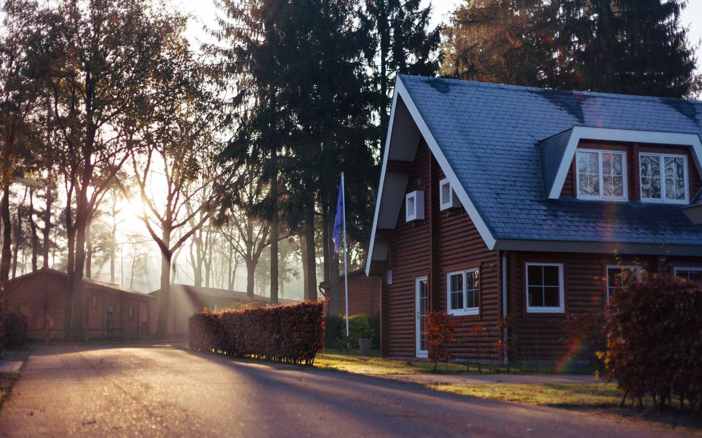 sunrising in a quiet neighbourhood with large trees and medium sized homes